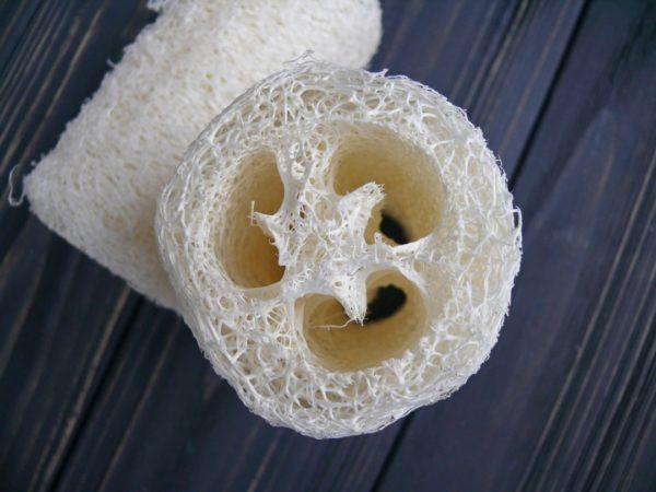 Люфа натуральная белая 10 см